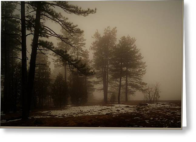Greeting Card featuring the photograph Morning Fog by Broderick Delaney
