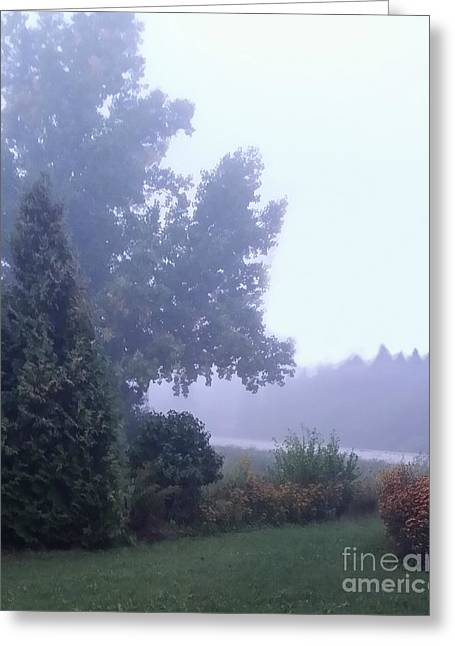 Morning Fog Greeting Card