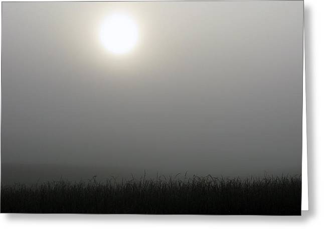 Morning Fog Greeting Card by Martie DAndrea
