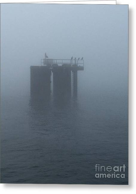 Morning Fog On The Sound Greeting Card