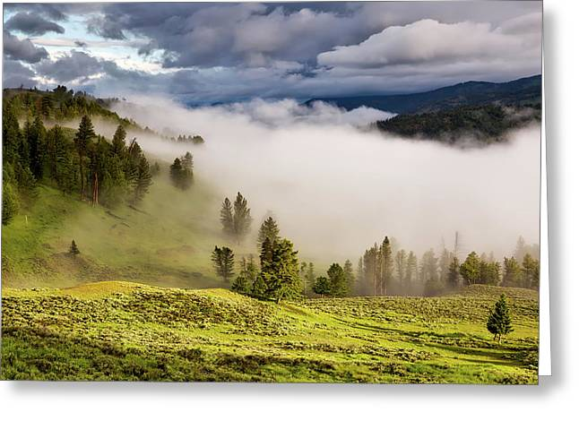 Morning Fog Over Yellowstone Greeting Card by Neal Herbert