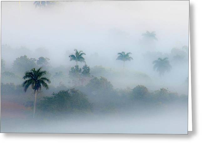 Morning Fog, Vinales Valley Greeting Card