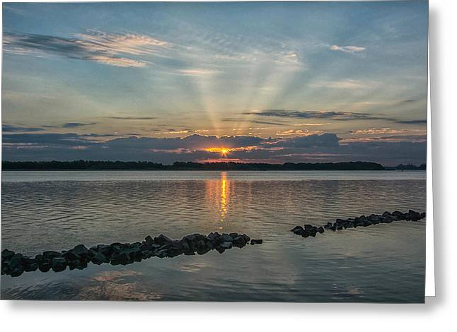 Morning Glory Greeting Card by Donnie Smith