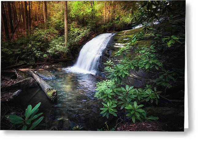 Morning Glow At The Waterfall Greeting Card by Debra and Dave Vanderlaan