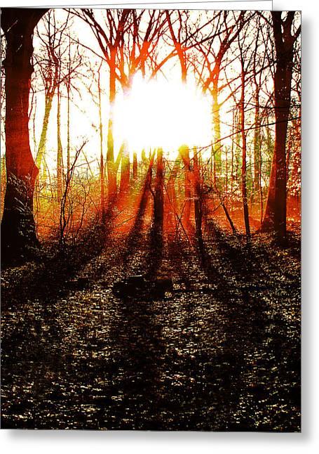 Morning Glow Greeting Card