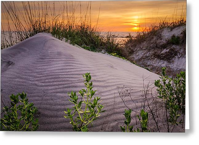 Morning Glow Greeting Card by Steve DuPree