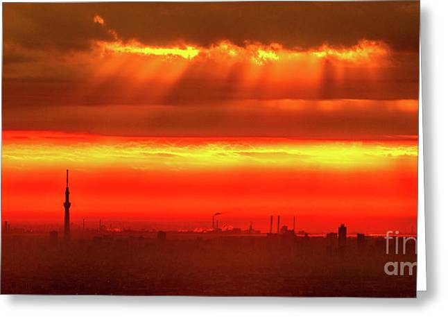 Greeting Card featuring the photograph Morning Glow by Tatsuya Atarashi