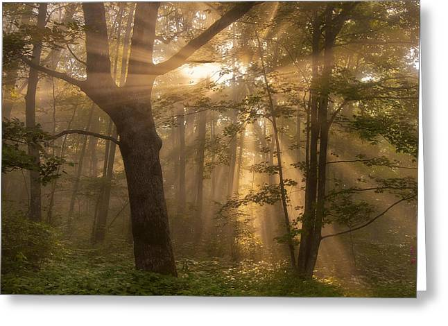 Morning God Rays Greeting Card