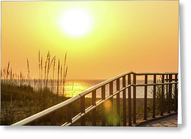 Morning Gold Greeting Card by AM Photography