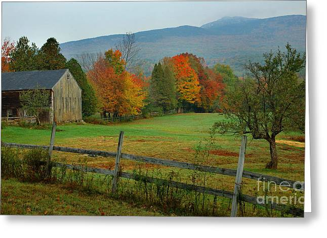 Morning Grove - New England Fall Monadnock Farm Greeting Card by Jon Holiday