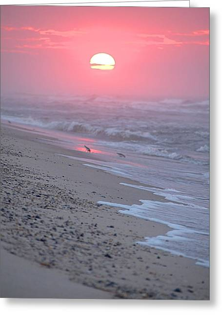 Greeting Card featuring the photograph Morning Haze by  Newwwman