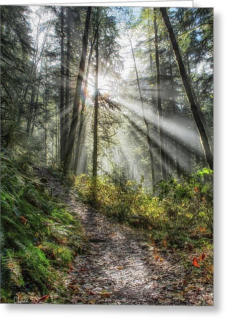 Morning Hike Greeting Card