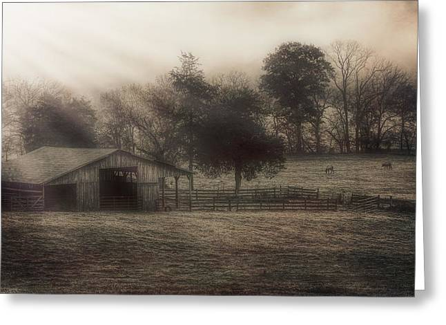 Morning In Boxley Valley Greeting Card by Jonas Wingfield
