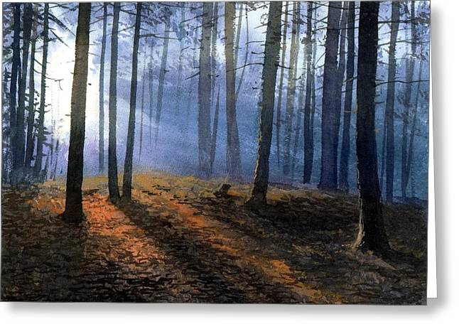 Morning In Pine Forest Greeting Card by Sergey Zhiboedov