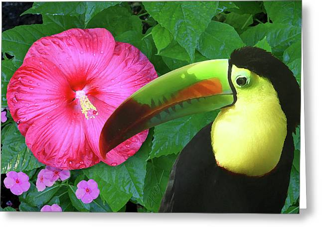 Toucan Print Greeting Cards - Morning In The Garden Greeting Card by Elorian Landers