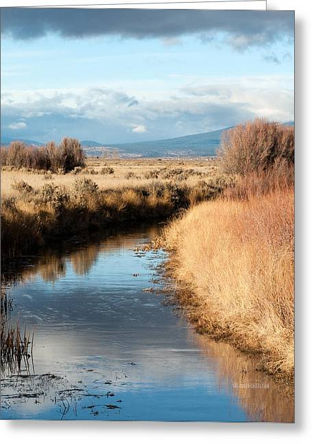 Morning In The Valley Greeting Card