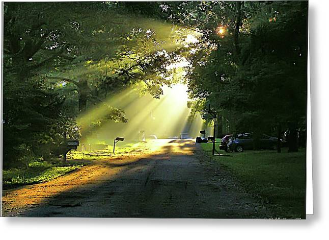 Greeting Card featuring the photograph Morning Light by Brian Wallace