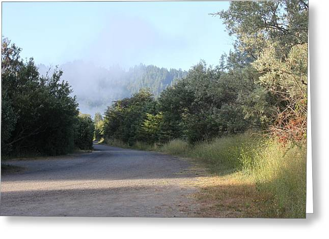 Morning Light By The Russian River Greeting Card by Remegio Onia