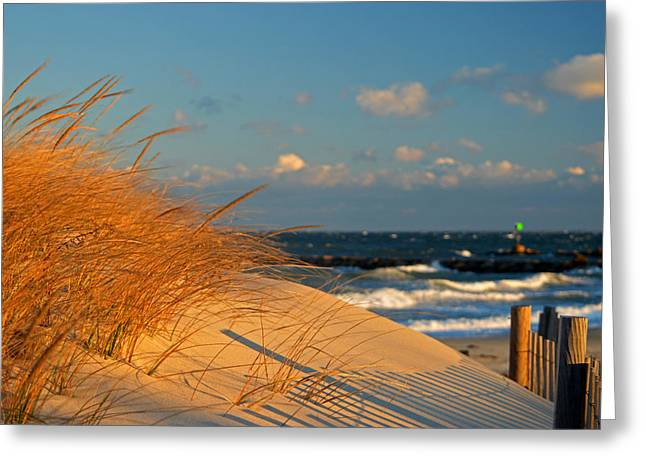 Morning Light - Cape Cod Bay Greeting Card by Dianne Cowen