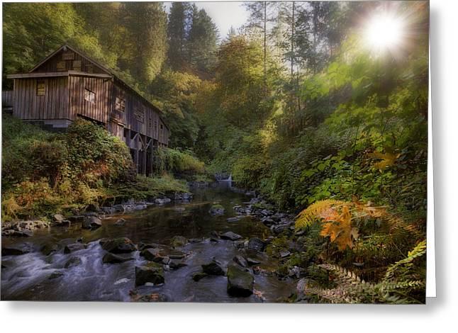 Morning Light Cedar Creek Grist Mill Greeting Card by David Gn