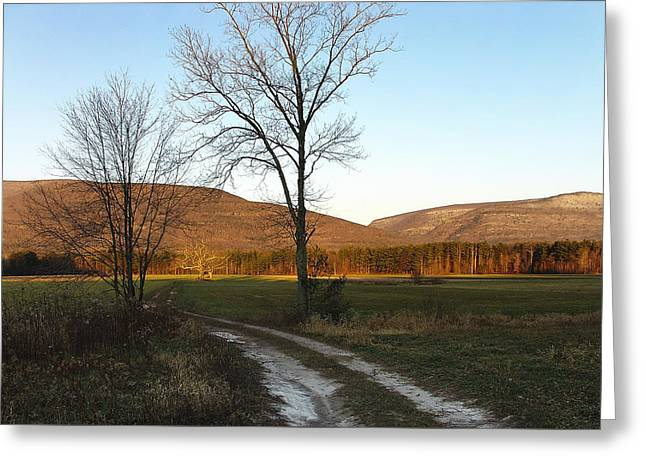 Morning Light Creeping Toward Story's Field At Palenville Greeting Card by Terrance DePietro