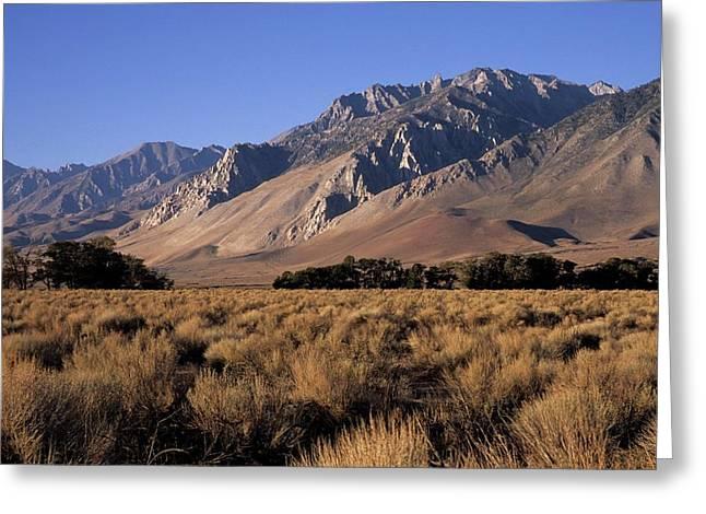 Morning Light Eastern Sierra Greeting Card by Don Kreuter
