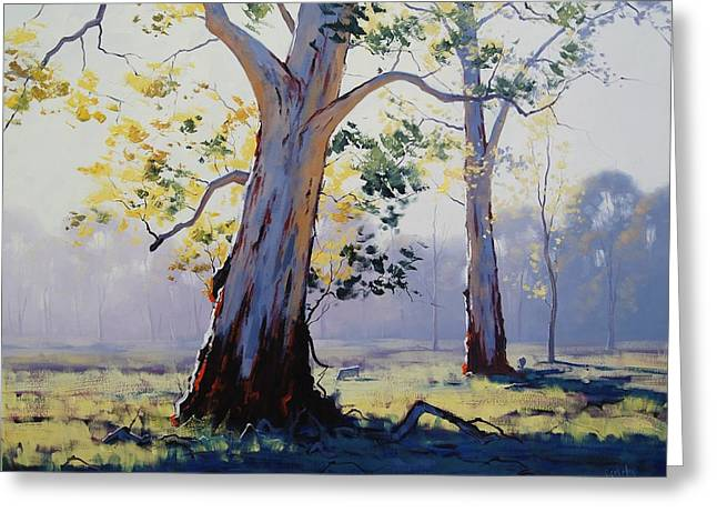 Morning Light Eucalypt Greeting Card
