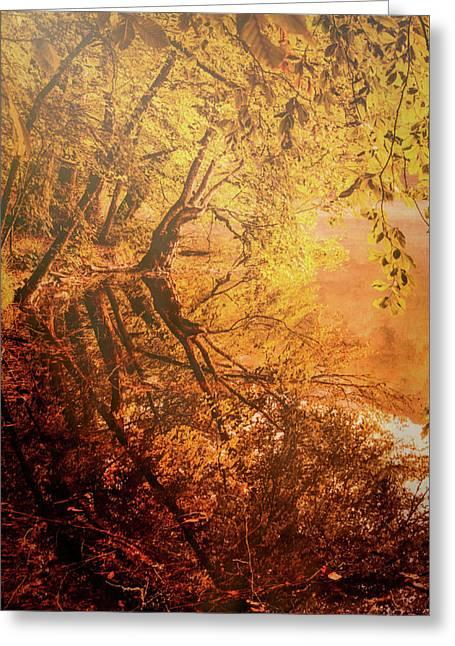 Morning Light Greeting Card by Okan YILMAZ