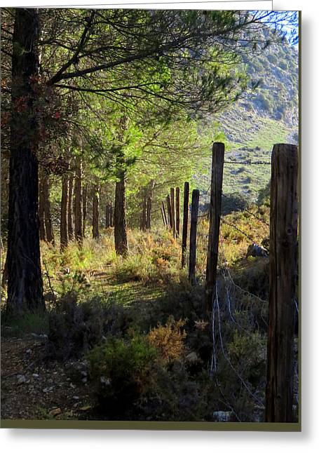 Morning Light On The Mountain, Andalucia, Spain  Greeting Card by J Darrell Hutto
