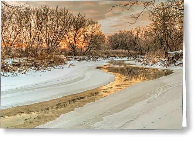 Morning Light On The Riverbank Greeting Card
