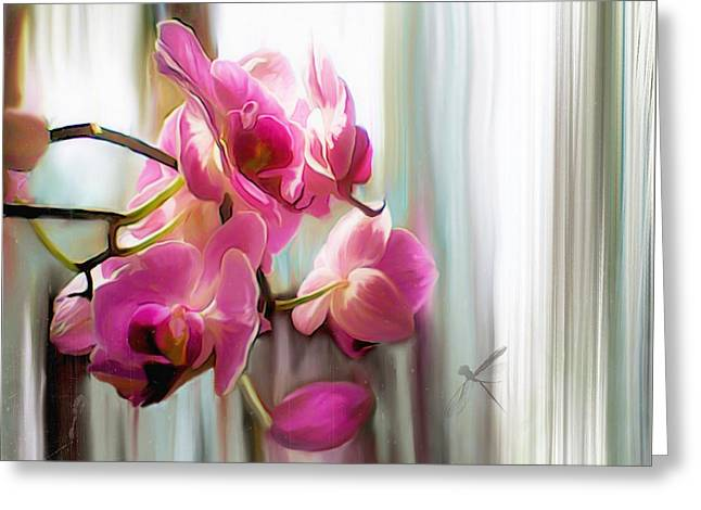 Morning Light Orchids Greeting Card