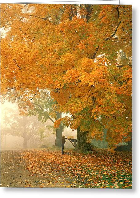 Morning Mail Cambridge Vermont Greeting Card