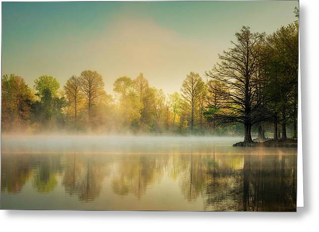 Greeting Card featuring the photograph Morning Mist At Honor Heights  by James Barber
