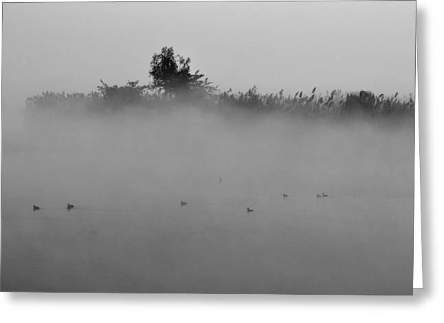 Morning Mist At Wetland Of Harike Greeting Card