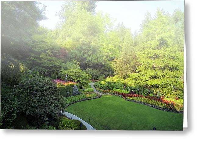 Butchart Gardens Greeting Cards - Morning Mist Greeting Card by Lawrence Christopher