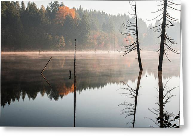 Morning Mist On A Quiet Lake Greeting Card