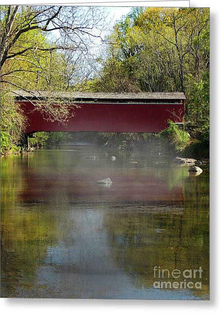 Morning Mist Greeting Card by Skip Willits