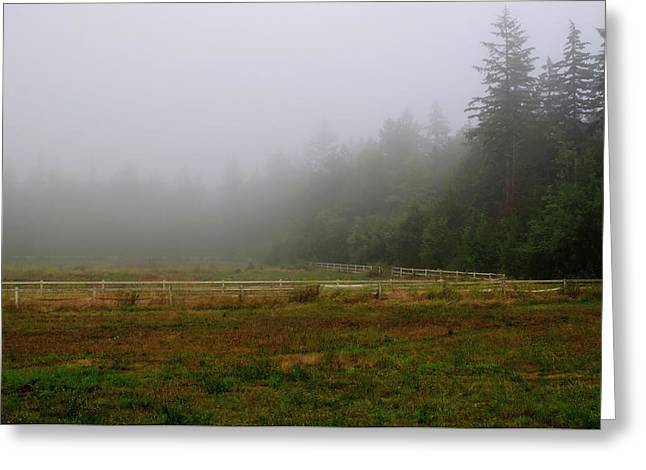 Greeting Card featuring the photograph Morning Mist Solitude by Tikvah's Hope