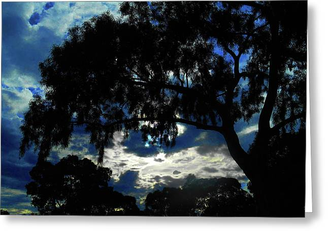 Greeting Card featuring the photograph Morning Mood by Mark Blauhoefer