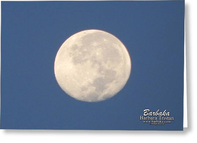 Greeting Card featuring the photograph Morning Moon by Barbara Tristan
