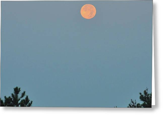 Morning Moon Greeting Card by JAMART Photography