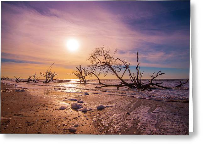 Greeting Card featuring the photograph Morning On Boneyard Beach by Steven Ainsworth