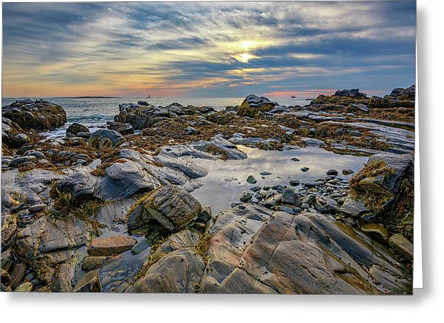 Morning On Casco Bay Greeting Card by Rick Berk