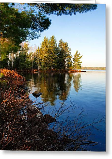 Morning On Chad Lake 4 Greeting Card by Larry Ricker