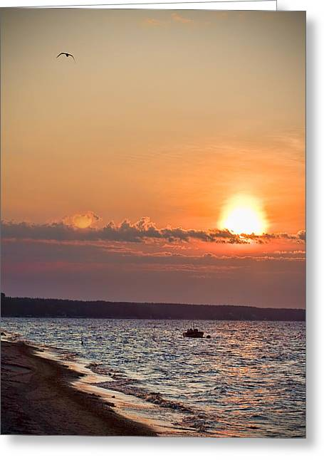 Morning On Earth Greeting Card by Michel Filion