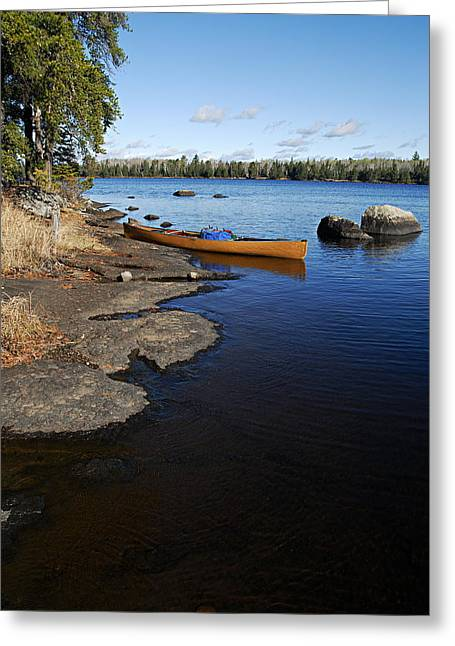 Morning On Hope Lake Greeting Card by Larry Ricker