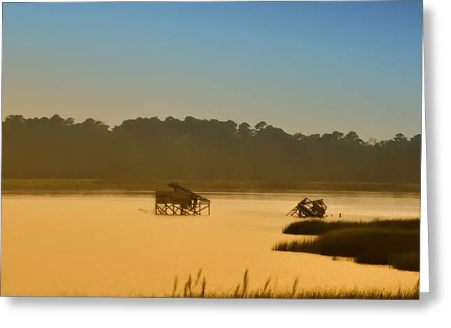 Morning On The Bay Greeting Card by Bill Cannon
