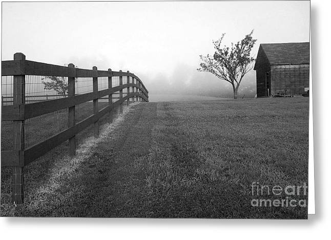 Morning On The Farm        Bw Greeting Card