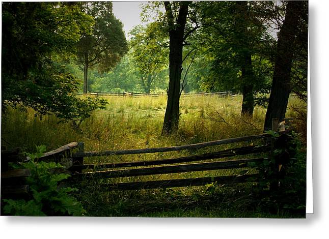 Morning Pasture Greeting Card by Robert Clayton
