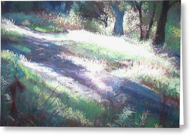 Morning Rays Greeting Card by Anita Stoll